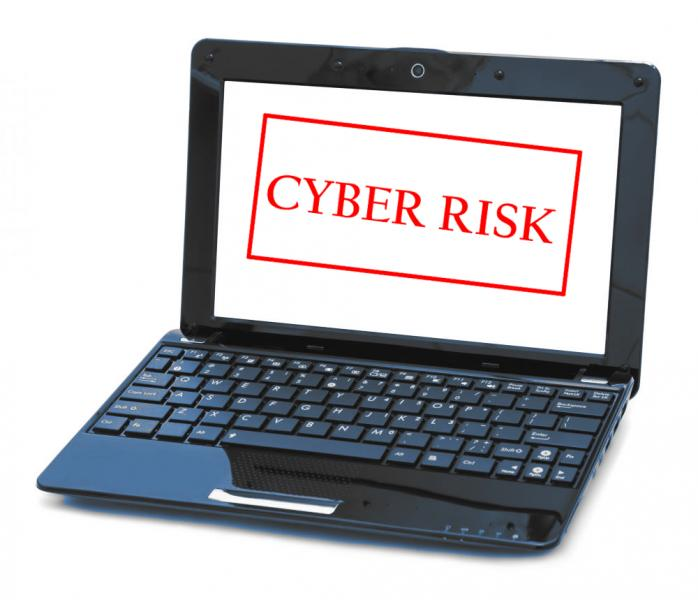 Cyber Insurance rise