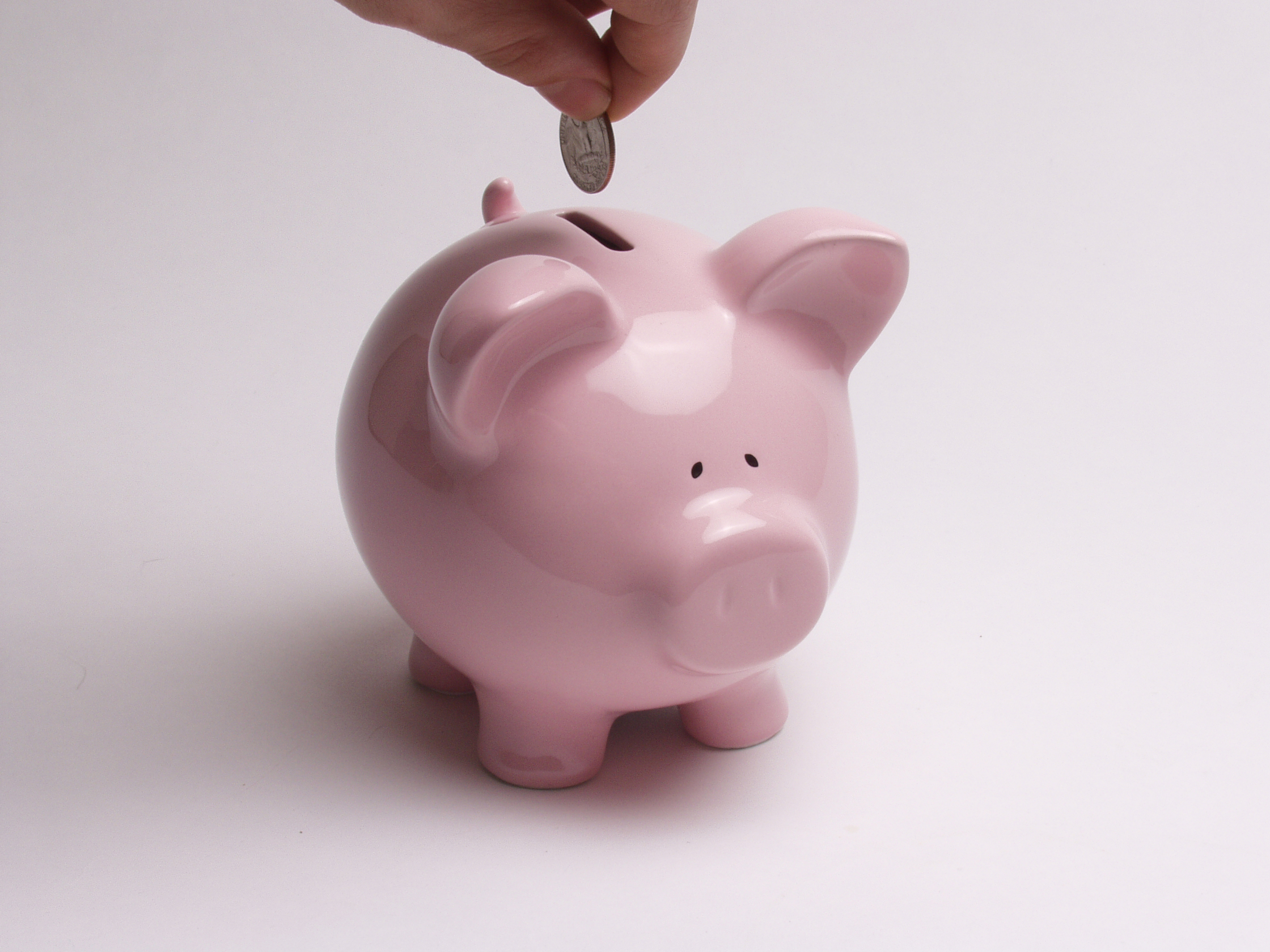 piggy bank income protection